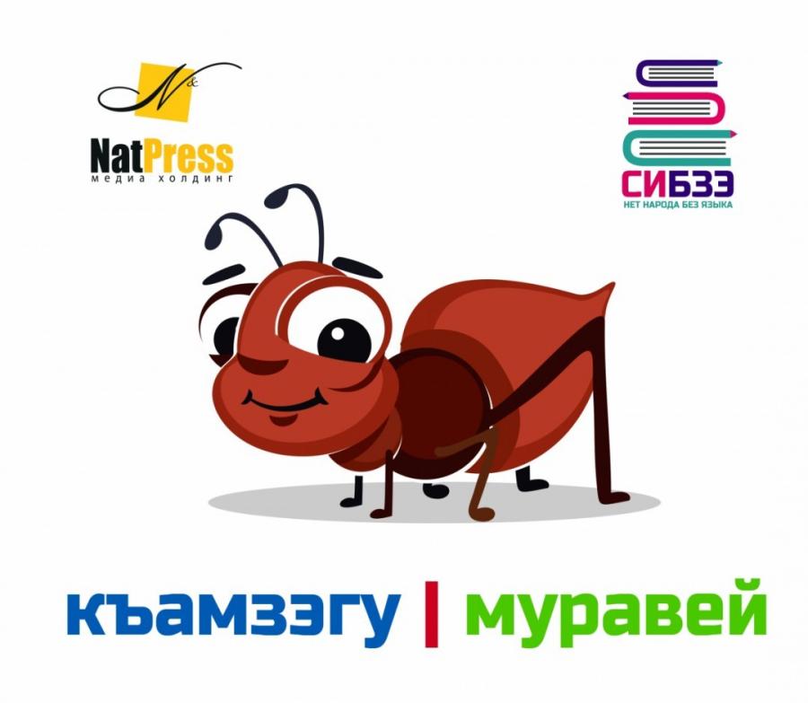 Къамзэгу - Муравей - Ant - Karınca