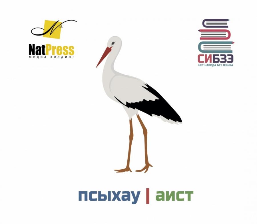Псыхау - leylek - stork - аист